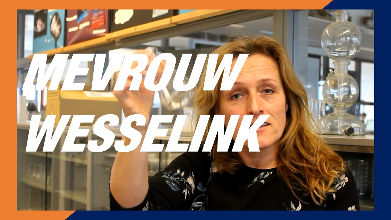 Was Mevrouw Wesselink een brave leerling? | 5T
